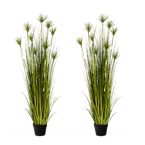 2X 150cm Purple Artificial Indoor Potted Papyrus Plant Tree Fake Simulation Decorative